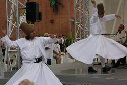 旋回舞踏2